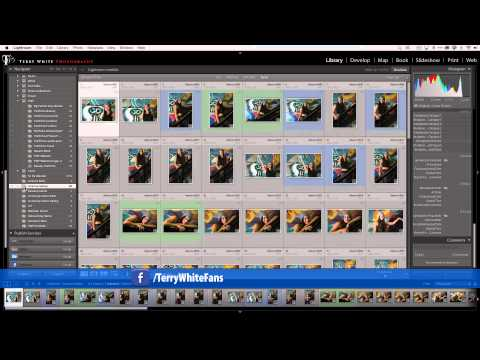 How to Use Lightroom Mobile to Get Feedback on your Photos