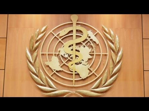 Inside the Issues 3.4 | Global Health Governance