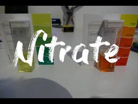 Nitrate zu hoch im Aquaponik System