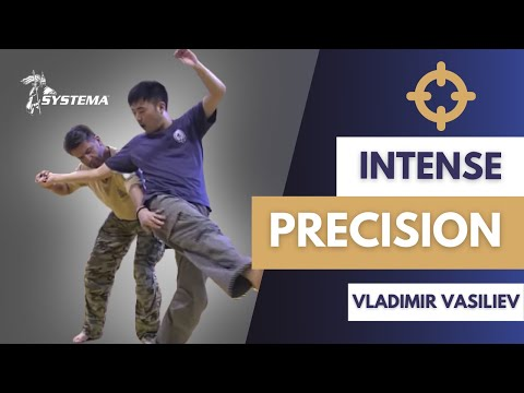 Intense precision. Systema Russian Martial Art by Vladimir Vasiliev in Tokyo. Image 1