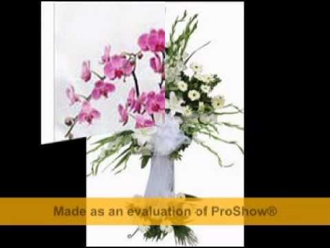 kağıthanede çiçekçi 05076903030