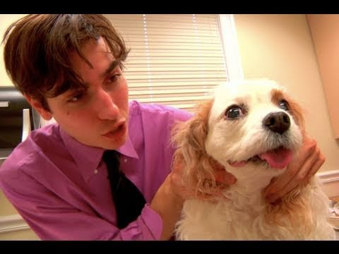 Dr. K-90210, Dog Plastic Surgeon (DELETED SCENES &amp; BLOOPERS!)