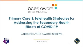 Primary Care & Telehealth Strategies for Addressing the Secondary Health Impacts of COVID-19