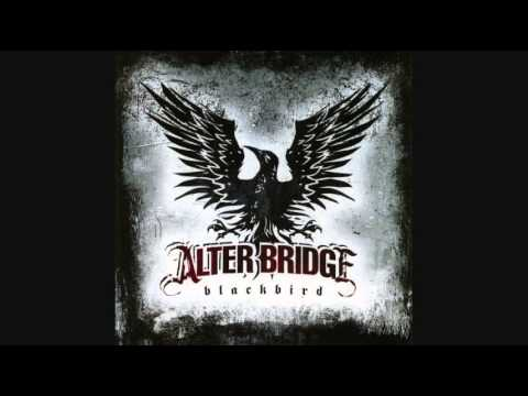 Alter Bridge - Blackbird (instrumental acoustic strings cover)