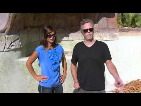 LAS VEGAS HOUSE FLIPPING WITH SCOTT AND AMIE YANCEY
