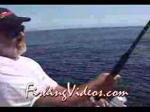 Sailfish & Roosters: Baja Fishing in East Cape