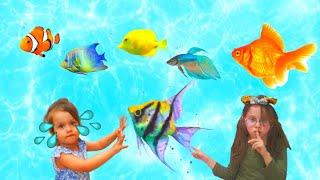 Lidya ve Begüm Oyun Alanında Balıkları Paylaşamadılar, Lidya Çok Ağladı - Funny Kids Videos