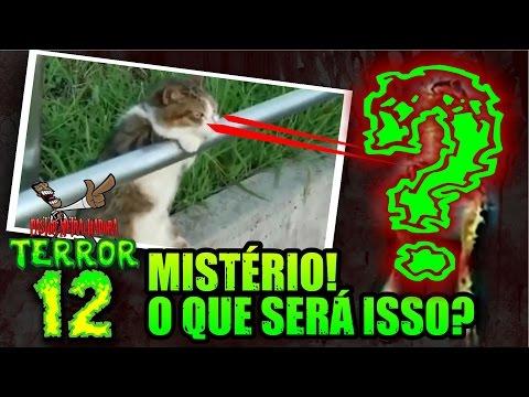 Pastor Metralhadora TERROR 12