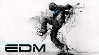 New Electro & House 2013 Best Of EDM Mix
