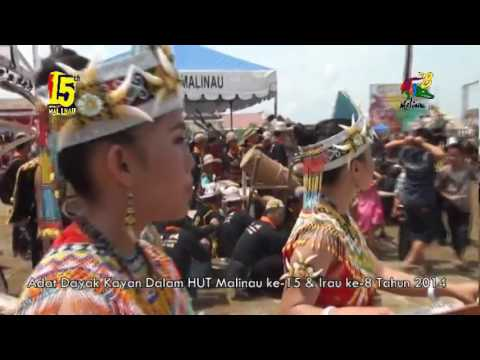 The festival Of DAYAK KAYAN dance and cultures on 8th IRAU in Malinau North Borneo in 2014 PART 1
