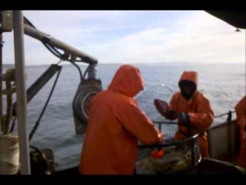 Crab Fishing Lisa Ann video