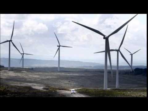 UN scientist Jacquie McGlade raps UK over renewables