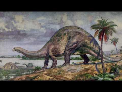Массовые вымирания в истории Земли (рассказывает палеонтолог Екатерина Тесакова)