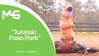 ティラノサウルス(t-rex)のコスプレをしてユーチューブにアップする人続出♪