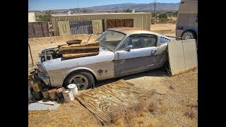 1965 Shelby G T 350 Mustang Barn Find