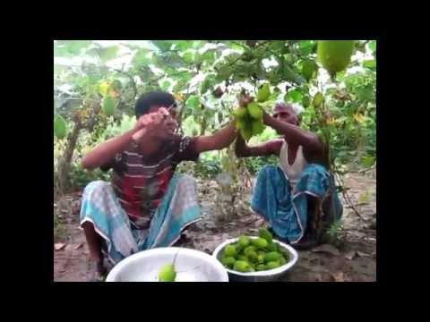 Amar Desh Amar Gram Narsingdi [HD]