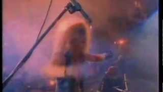 Watch Poison Look What The Cat Dragged In video
