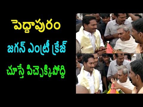 YS Jagan Fans Grand Welcome Entry in peddapuram pada yatra | Cinema Politics