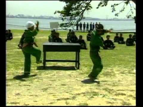 Pencak Silat - Compilation of traditional Pencak Silat techiques in Indonesia