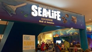 SEA LIFE Minnesota Aquarium in Mall of America