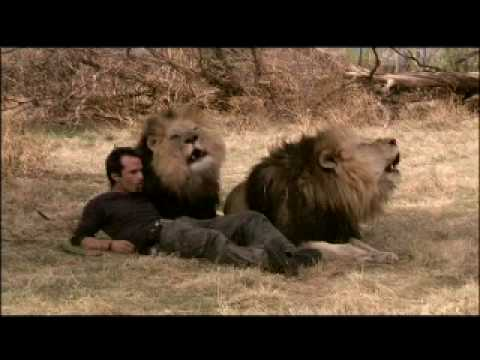 Kevin Richardson (white Lion-home Is A Journey).m4v video