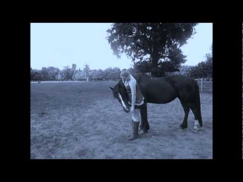 Patience My Horse Xxx video