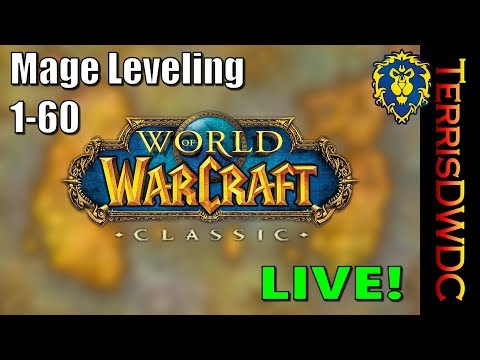 World of Warcraft Classic - Mage Leveling 21+
