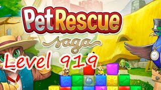 Pet Rescue Saga Level 919 (NO BOOSTERS)