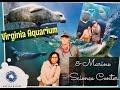 Virginia Aquarium    Virginia Beach,  VA