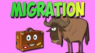 Migration Song- Animal Migrations