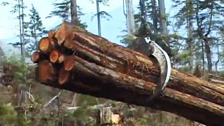 Erickson Timber Harvesting: Value By the Bundle