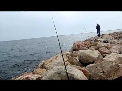 pêche de la daurade étang de Thau à Marseillan