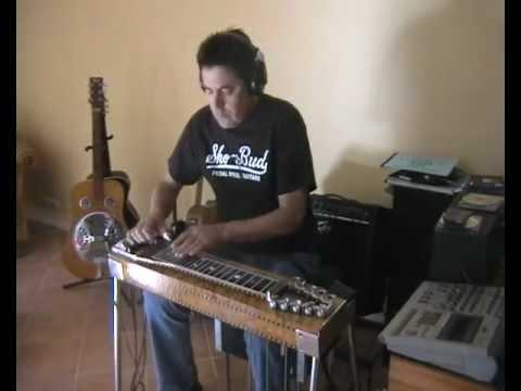 Steel Guitar Rag - Greg Flynn.avi
