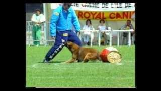 1989 La Cipale, Finale Ring, Primo Orlandini Vicco du Calvaire aux Acacias