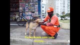 A história do cachorro Soneca - da rua até ganhar um lar (parte 1) HD