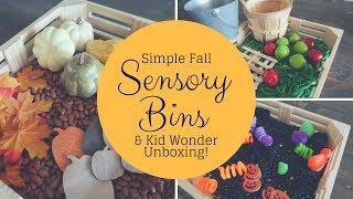 Fall Sensory Bins || & Kid Wonder Unboxing!