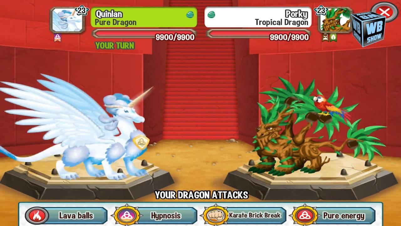 Dragon City  Dragon Games Online
