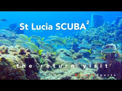 St Lucia SCUBA - Seahorse - The Return Visit