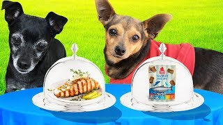 REAL FOOD VS. DOG FOOD CHALLENGE! (Pawzam Dogs)