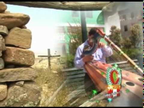 palomita mensajera ulises medina de huacaña