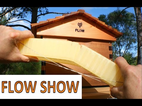 FLOW hive beehive practical review beekeeping 101