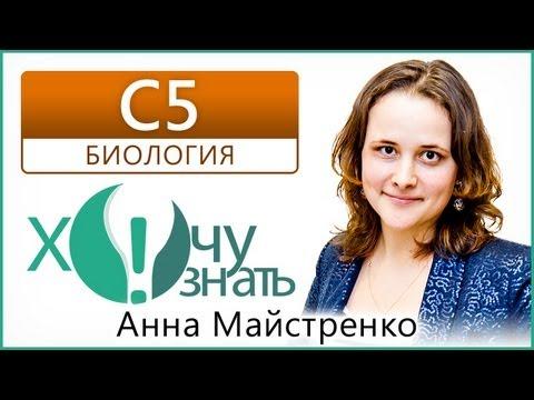 C5 - 6 по Биологии Подготовка к ЕГЭ 2013 Видеоурок