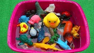 Nome e sons de animais para educação infantil - Brinquedos de animais de plástico para crianças