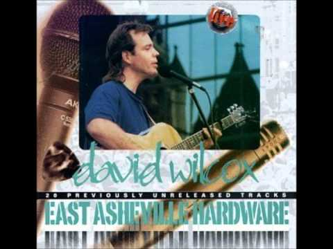 David Wilcox - You Should See the Way It Feels