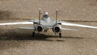 RC  F-14 Tomcat 3rd Flight With EDF Power Loss ER Landing.