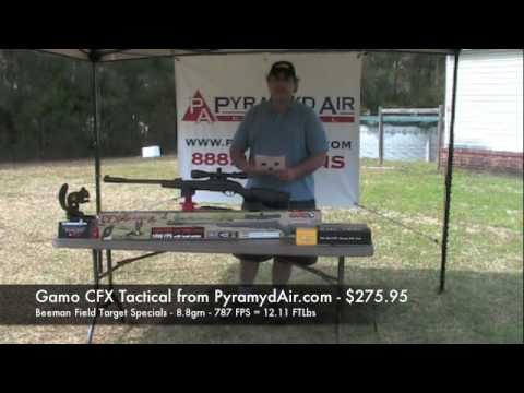 Gamo CFX Tactical - Not the most powerful, but certainly accurate