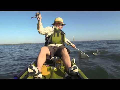 Fishing Botany Bay