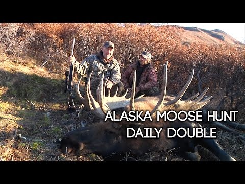 Alaska Moose Hunt - Daily Double