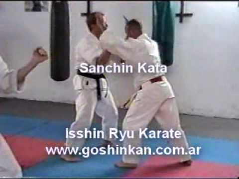 Sanchin Kata - Isshinryu Karate Image 1