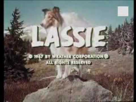 Lassie is listed (or ranked) 6 on the list The Best Live Action Animal Movies for Kids